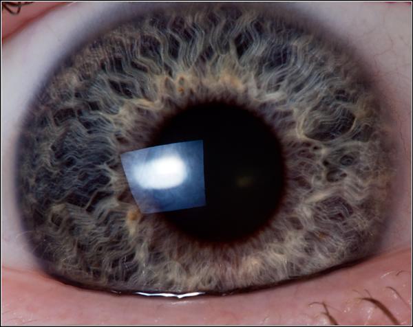 Macro photo of my own eye