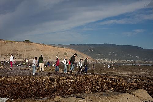 People walking on the tidal pools