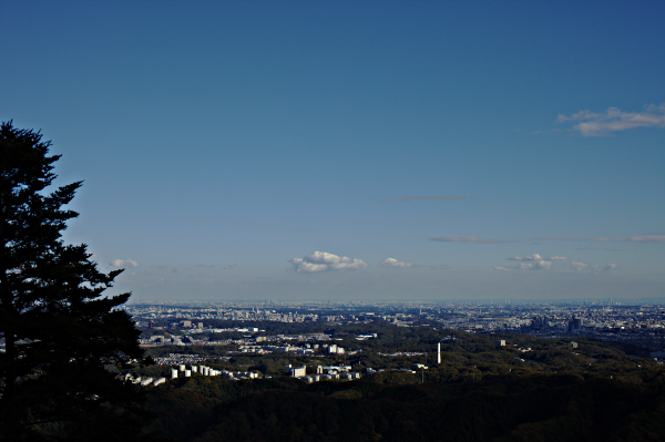 Tokyo from Mt. Takao